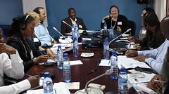 IREX MOZAMBIQUE 2014-05-26E (msp.irexmozambique) Tags: mozambique maputo moçambique irex tropicais jornalistas doenças capacitação negligenciadas
