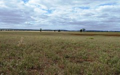 . Boorga and New Farms Roads, Nericon NSW