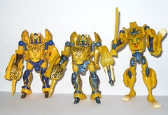 cheetor transformers beast wars with cheetor beast wars 10th anniversary and cheetor universe 2.0 deluxe class hasbro (tjparkside) Tags: with anniversary deluxe class transformers beast 10th wars 20 universe heroic hasbro tenth maximal maximals cheetor