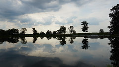 farm pond reflection (1suncityboi) Tags: