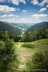 Vosges Mountains (Smartin69) Tags: trees summer sky mountain france green nature clouds rural forest landscape europe track horizon hill perspective meadow peak valley footpath hilly vosges diminishing vogesen
