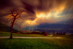 A tree is drawn to the sky (radonracer) Tags: tree surreal berge fantasy alpen gewitter baum sturm
