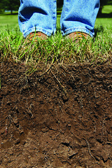 Boots on the ground (PA-NRCS) Tags: grass boots roots ground soil