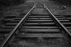 Tracks Canon 600D (BluNoddy) Tags: road railroad blackandwhite bw texture train canon dark traintracks tracks rail vignette can600d