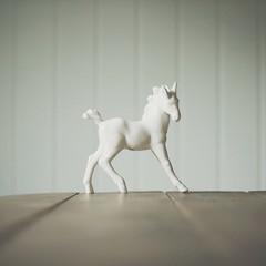 horse (victoriafagerli) Tags: horse interior minimalistic