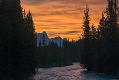Along the Bow (dbushue) Tags: trees light sunset canada mountains nature clouds river landscape evening nikon dusk silhouettes alberta lakelouise bowriver goldenhour banffnationalpark canadianrockies 2014 absolutelystunningscapes dailynaturetnc14