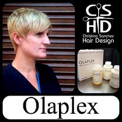 "Olaplex http://www.christinasanchezhairdesign.com • <a style=""font-size:0.8em;"" href=""http://www.flickr.com/photos/69107011@N07/15035631935/"" target=""_blank"">View on Flickr</a>"
