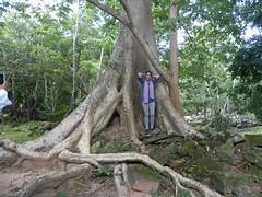 Angkor Thom - 055 (txikita69) Tags: cambodia khmer angkorwat siemreap angkor taprohm bayon angkorthom banteaykdei camboya thommanon bakseichamkrong phnomkrom khmerempire tonlesap terrazadeloselefantes banteaysamre regencyangkorhotel