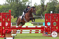 (303) IMG_3566 (laureljarvis) Tags: show horse jumping tournament jumper equestrian equine ogilvy rockwood angelstone