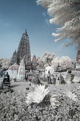 India_0176
