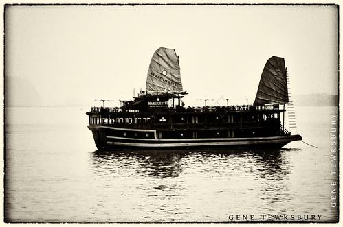 Floating Junk