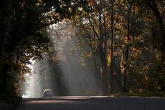 5_2 (facebook.com/GalakaSlava) Tags: road morning autumn car forest canon landscape dawn ray ukraine suburb 6d 24105
