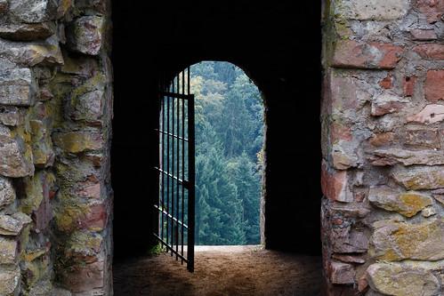 Une porte sur la Forêt-Noire