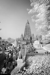 India_0151
