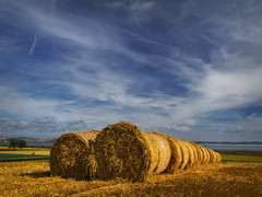 The Comber Caterpillar (explored)(Getty Listed) (Alan10eden) Tags: autumn field barley landscape view farm harvest straw bluesky september round northernireland farmer bale stubble ulster cropping countydown strangfordlough arable comber tillage alanhopps