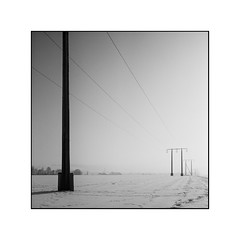 Down the line (cardijo) Tags: austria österreich salzburg landscape landschaft winter snow minimalistic rodinal analog film ilford fp4 rolleiflex tessar zeiss sw schwarzweis bw blackandwhite monochrome nikon coolscan
