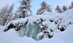 Ice and snow (luca2142) Tags: italy italia ice ghiaccio neve nevefresca pescegallo valgerola gerolaalta valtellina lombardy lombardia alpiorobie alps alpi winter inverno