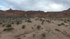 Gold Butte 1 (LDELD) Tags: arial dji video nevada goldbuttenationalmonument desert dry rugged virginriver
