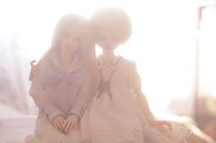 Solaris and Delphine (T e s l a) Tags: ninodoll shampoo dim bellosse