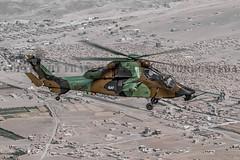 FRANCISCO FRANCÉS TORRONTERA (3) (Francisco Francés Torrontera (Oroel)) Tags: famet fuerzasarmadasespañolas fuerzasaeromóvilesdelejércitodetierra eurocopter ejércitodetierra ejércitoespañol ec665 ec665tigre tigre tiger tigrehap airbushelicopter attackhelicopter natohelicopter nh90 ngc nationalgeographic bhelai helicopter ha28hap spanisharmyhelicopter spanish spanisharmy afganistan afganistanwar afganistanspanishunithelicoter aspuhel helicopters he