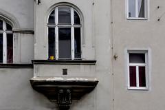 gelb auf grau (RadarO´Reilly) Tags: vienna wien building window fenster flowerpot gebäude blumentopf