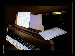 Cantate (Dany_de_Paris) Tags: music hairy male art naked nu piano nackt homme musique peludo poilu