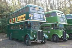 KYY877 1950 AEC Regent III with Weymann body ex LT no RT3148, HLX421 1948 AEC Regent III Weymann ex LT RT604 (Pete Edgeler) Tags: iii regent brooklands weymann aec rt604 classicbus rt3148