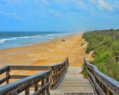 To the Beach (David Davila Photography) Tags: vacation beach florida geotag newsmyrnabeach 2014 nikond800 holuxm241
