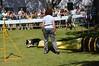 DSC_0455 (Clube de Cãompo Hotel Fazenda para Cães) Tags: agility jundiaí estimacão clubedecãompo clubedecãompohotelfazendaparacães hotelfazendaparacãesituclubedecãompo