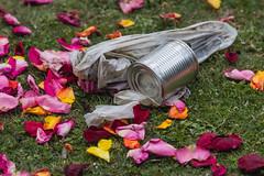 Ptalos de Lata (Sergio Tohtli) Tags: trash basura lata impactoambiental ptalos environmentalimpact mosaiconaturamxico