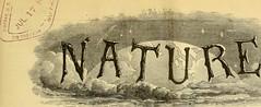 Anglų lietuvių žodynas. Žodis syenite reiškia n min. sienitas lietuviškai.