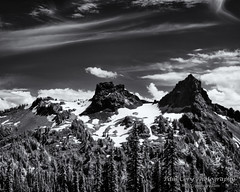 View from Mount Rainier (Paul Cory) Tags: lighting camera summer sky blackandwhite snow mountains tree weather clouds forest season landscape washington paradise afternoon unitedstates availablelight naturallight mountrainiernationalpark infrared geolocation postprocessing usnationalparks canoncamera timeofday naturalfeature niksoftware seleniumtoning geocity camera:make=canon exif:make=canon geocountry geostate exif:lens=61305mm camera:model=canonpowershotg10 exif:model=canonpowershotg10 exif:aperture=45 silverefexpro2 exif:isospeed=80 exif:focallength=24978mm canonpowershotg10ir
