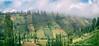 Vertical agriculture in East Java Indonesia (Tatyana Kildisheva) Tags: trip travel tourism field vertical trekking indonesia volcano java asia southeastasia adventure backpacking crops jawa tropics semeru tengger stratovolcano seaofsand activevolcano mountsemeru eastjava jawatimur gunungsemeru jatim mahameru greatmountain ява republicofindonesia republikindonesia bromotenggersemerunationalpark tenggersemerunationalpark tenggercaldera semerunationalpark mountbatok puspo азия индонезия приключение tamannasionalbromotenggersemeru lautpasir tenggerese semeruvolcano треккинг tenggerpeople юговосточнаяазия tenggernationalpark verticalagriculture бекпекер бэкпэкинг островява thegreatmountain tenggervolcaniccomplex highestpeakinjava ajekajekcaldera puncakparadewa jawawétan kawasantamannasionalbromotenggersemeru jambagancaldera