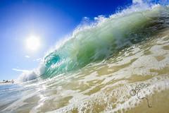 Sandy's wm (MICHAEL A SANTOS) Tags: ocean sunrise hawaii surf waves oahu reef eastside whitewash fisheyelens surfphotography michaelasantos canon7d liquideyewaterhousing rokinon8mmfisheye rokinon8 saintsphotography toesphotos