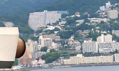 Atami Backdrop (Hana Samurai) Tags: urban food bird japan fly seaside wings seagull hunting feathers  prey float shizuoka  survival izu avian atami  glide feedme ferryride    hatsushima   peninnsula