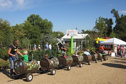 Barrel Train Rides @ Wickman's