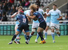 Josh Furno (Chris Lishman) Tags: sports sport newcastle rugby tackle falcons newcastlefalcons rugbyunion kingstonpark joshfurno