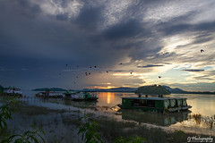Return to Home (Chandrajit Bhattacharjee) Tags: sunset bird clouds assam guwahati ujanbazar