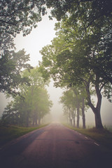 Misty morning (Maria Karlsson) Tags: morning summer mist landscape sweden sverige sommar morgon landskap dimma vstmanland strmsholm kolbck