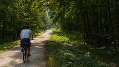 Cyclist (Marko Kovanen) Tags: park nature forest helsinki cyclist shadows urbannature 2014 mellunkylä