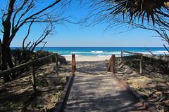 Walkway to the Beach (Jocey K) Tags: trees sea sky water sand shadows australia queensland waterway goldcoast broadbeach