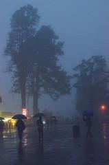 Rain Soaked Chowrasta, Darjeeling (Pritam2k7) Tags: hill queen hills himalaya darjeeling himalayas himalayan stations westbengal incredibleindia darjiling raininthehills watercolorphotography