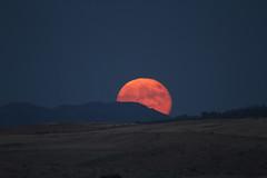 IMG_0953z (berserker170) Tags: luna moon 7d eos sigma 150500 noche night flickrexploreme