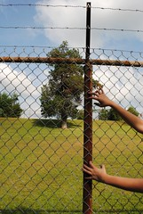 fence with hands (clarastimpson) Tags: camera blue sky color tree green grass clouds contrast fence photography wire hands photograph saturation hue edit