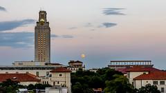 UT Moon (argash) Tags: moon austin uttower ut texas universityoftexas dkr dkrstadium supermoon