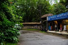 DSC_9476 (Vivek Sheel) Tags: houseboat kerala cochin teagarden kochi backwaters thekkady munnar allepy alapuzha