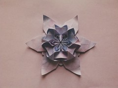 Wolfgang flower (Monika Hankova) Tags: flower star origami scholz