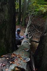 Lauren Jackson in Denmark (UMN Department of Plant Pathology) Tags: plantpathology plantdisease planthealth cfans forest pathology universityofminnesota jackson denmark graduatestudent blanchette