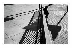 Madrid (Punkrocker*) Tags: leica m5 summicron c 40mm 402 film kodak trix 400 nb bwfp street city people shadow madrid spain espagne espana travel
