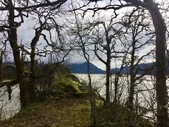 Trust for Public Land (rooftop65) Tags: carsoncove columbiariver stevenson washington columbiagorgenationalscenicarea trustforpublicland tpl
